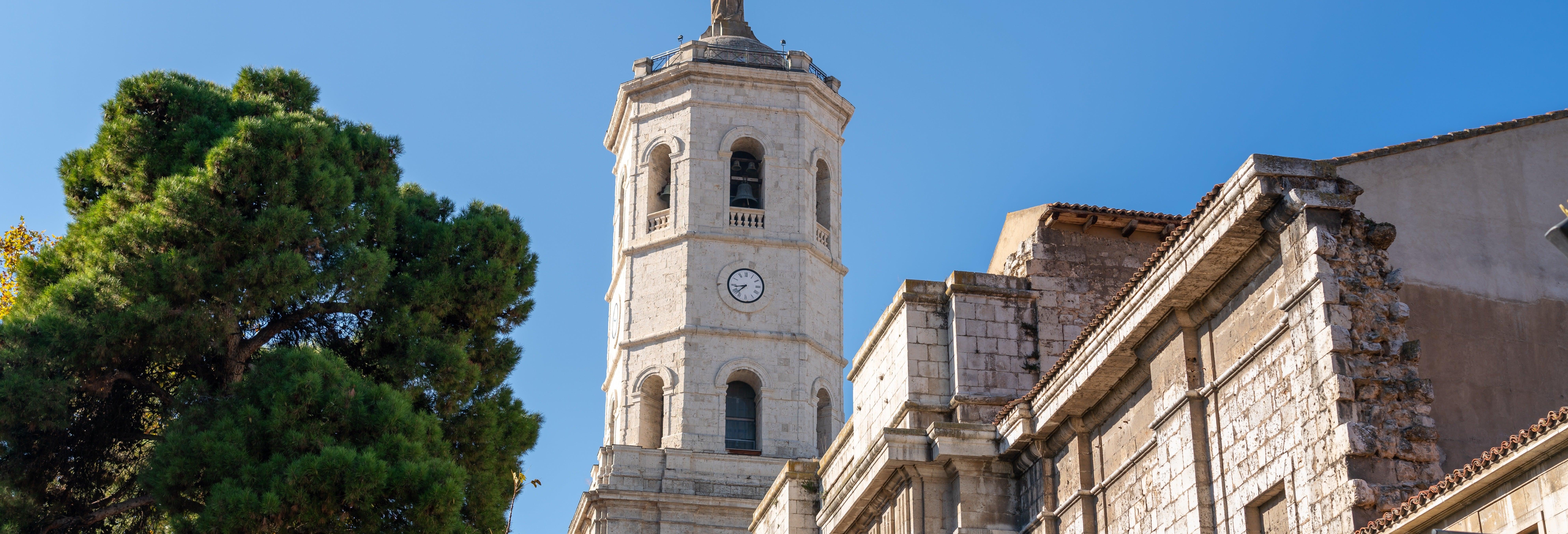 Visita de la Torre de la Catedral