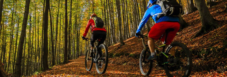 Tour de bicicleta elétrica pelo Parque Natural do Montseny
