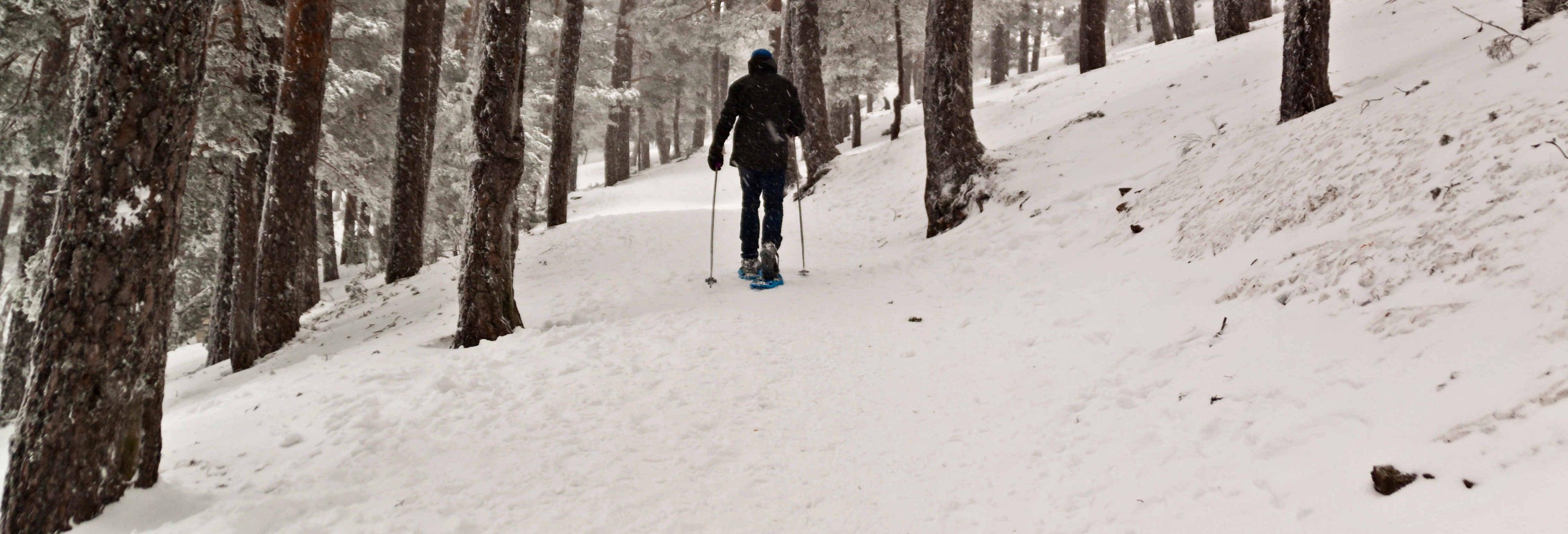 Paseo con raquetas de nieve por la sierra de Urbión