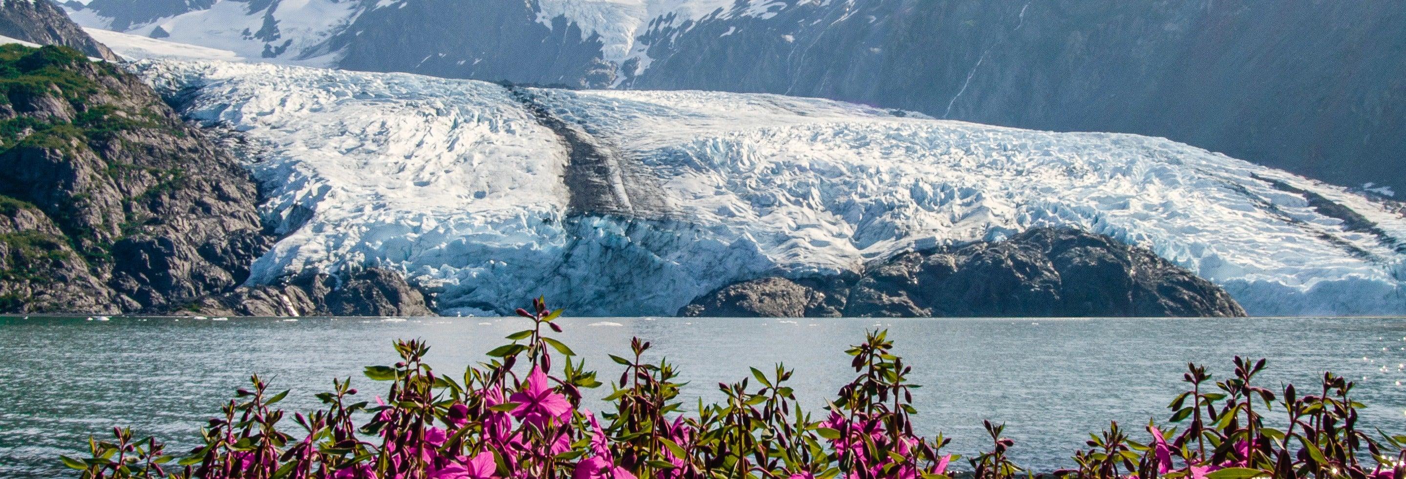 Glaciar Portage + Centro de Conservación de Vida Silvestre