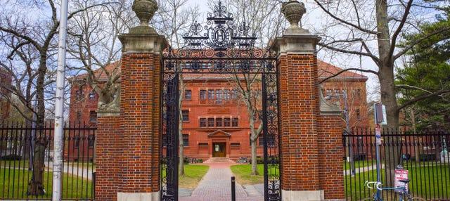 Visita guiada por Harvard
