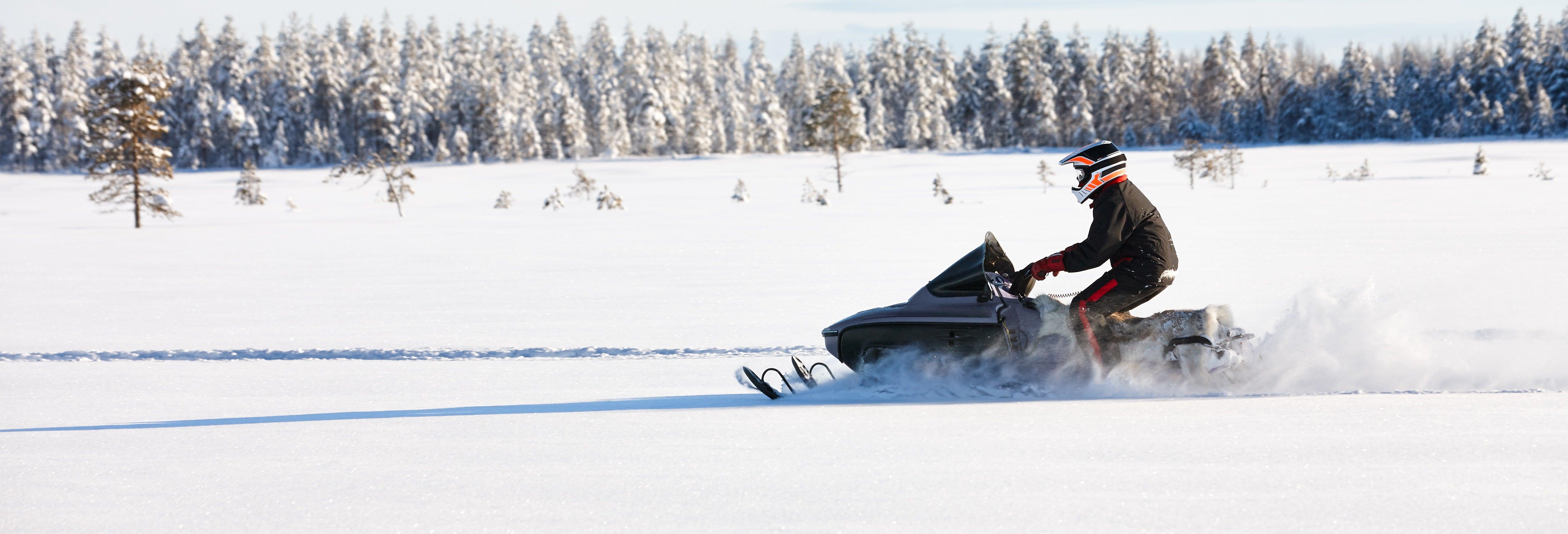 Balade en moteneige à Fairbanks