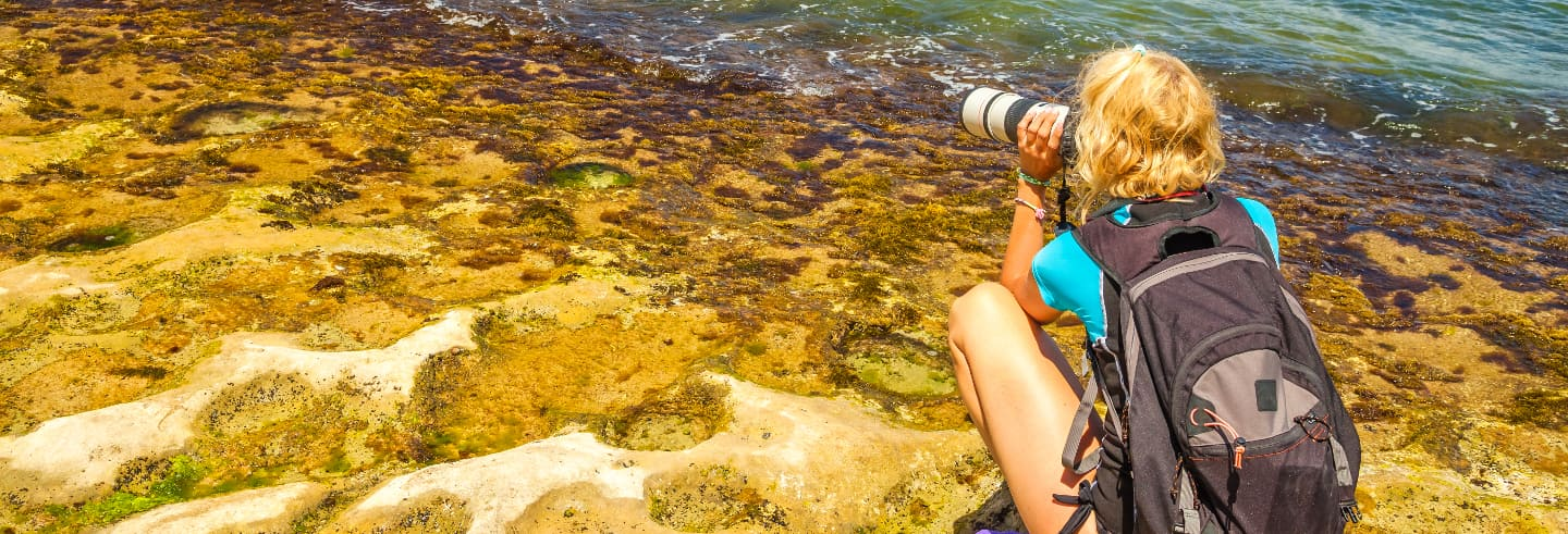 Visite photos dans Oahu