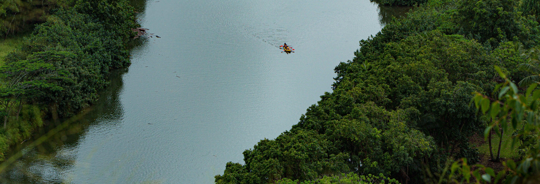 Tour en kayak por Hanalei