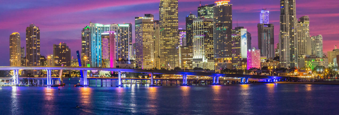 Miami Night Cruise