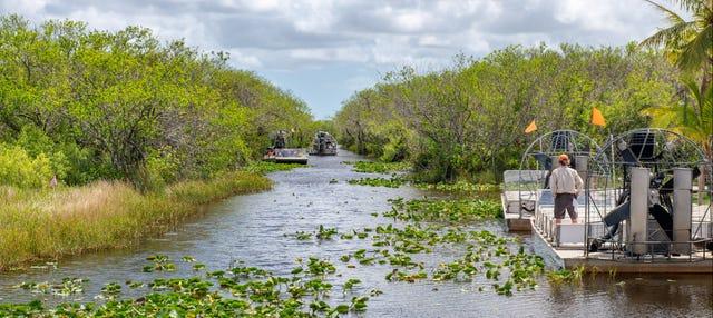 Paseo en aerodeslizador por los Everglades