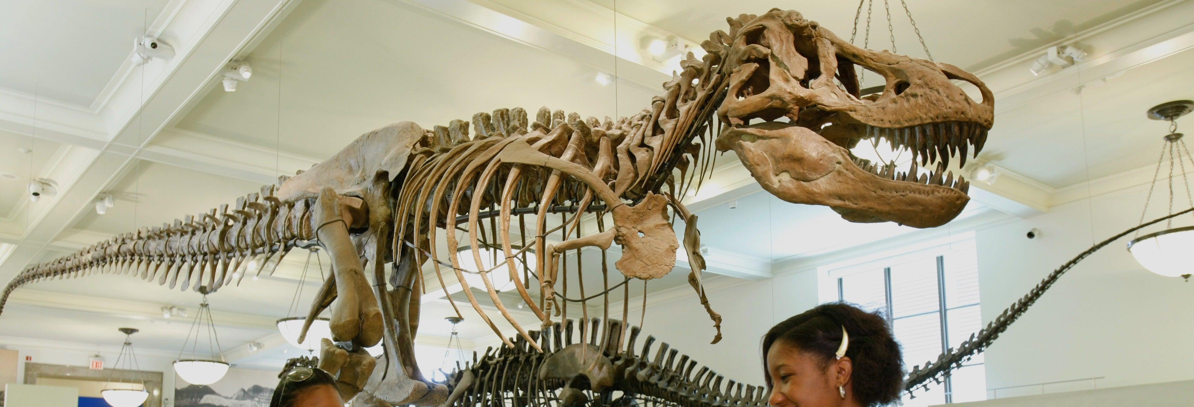 Entrada al Museo Americano de Historia Natural