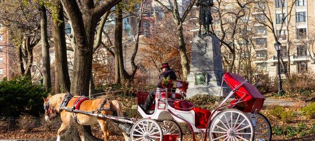 Paseo en calesa por Central Park