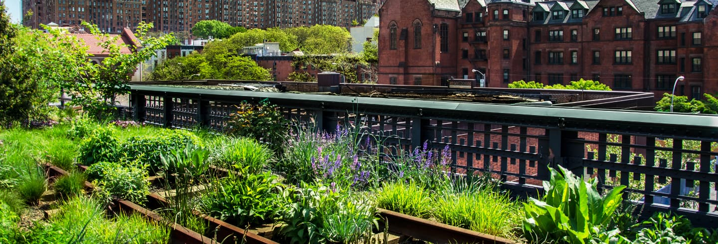 Tour por High Line y Hudson Yards