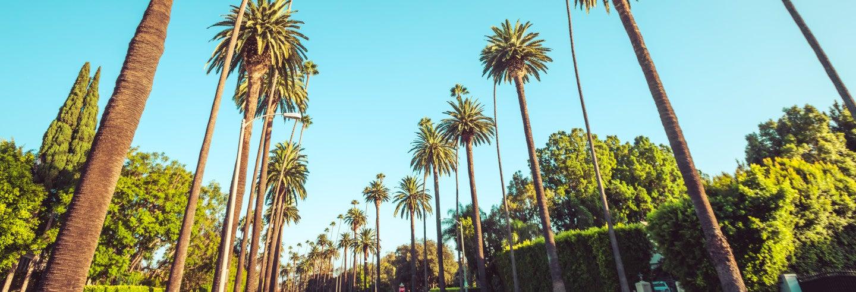 Los Angeles & Hollywood Day Trip
