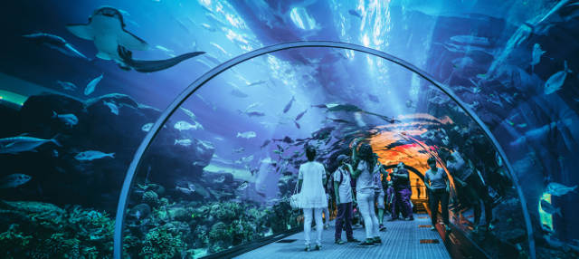 Entrada al Aquarium of the Bay