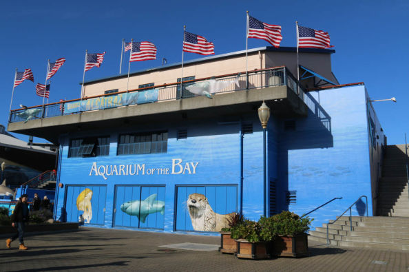 Aquarium of the Bay is located in the port of San Francisco