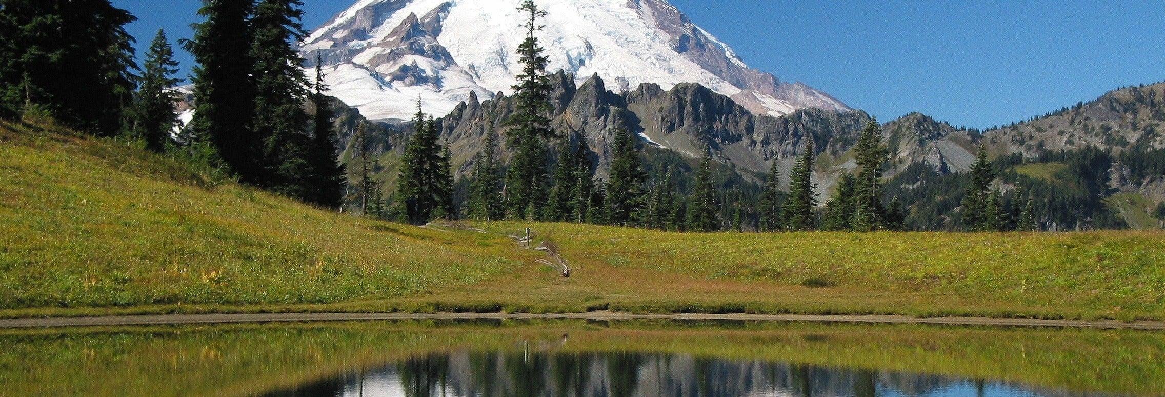 Excursión al Parque Nacional del Monte Rainier