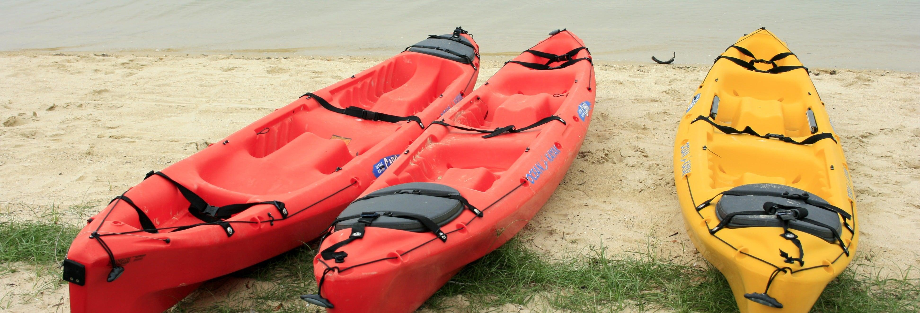 Alquiler de kayak en Tavernier