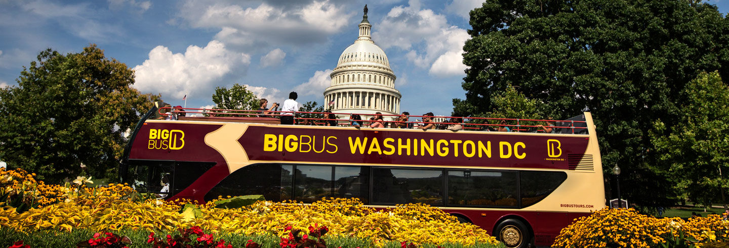 Bus touristique de Washington DC