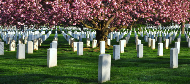 Arlington Cemetery & DC War Memorials Tour