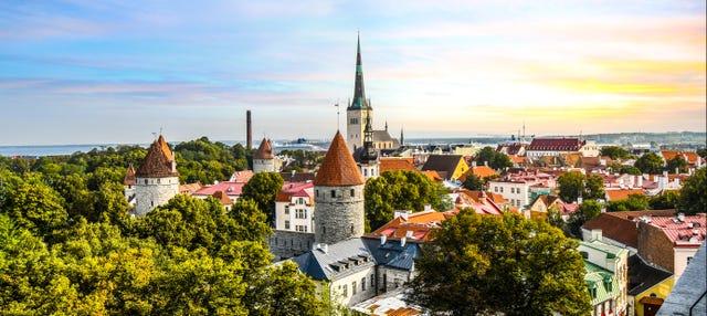 Tour privato di Tallinn con guida in italiano
