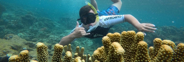 Beqa Lagoon Snorkelling Trip