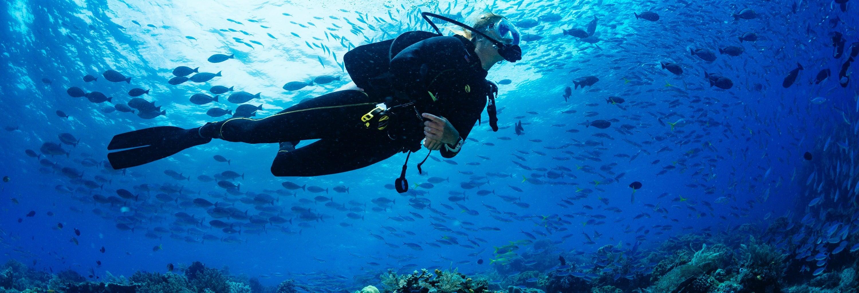 Buceo en los arrecifes de Bohol