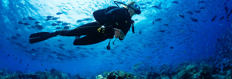 Bohol Scuba Diving