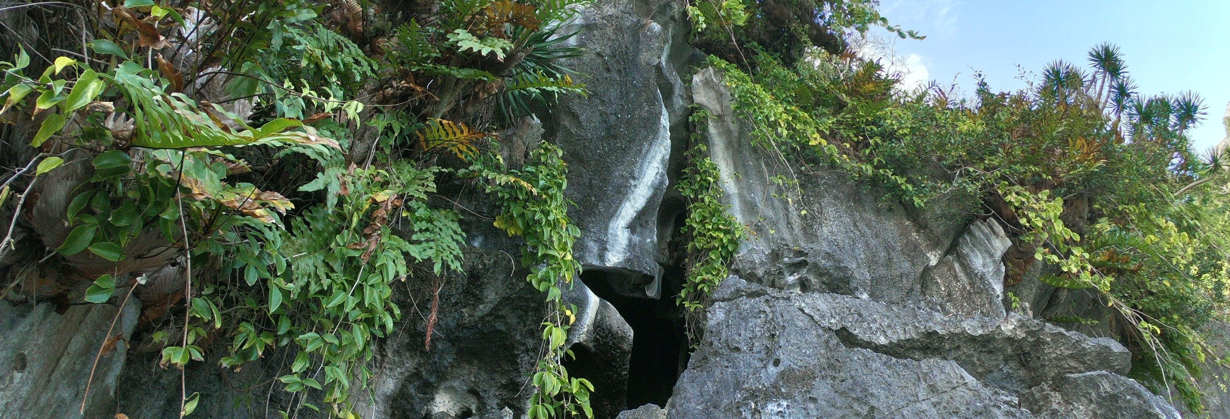 Tour in barca delle grotte di El Nido