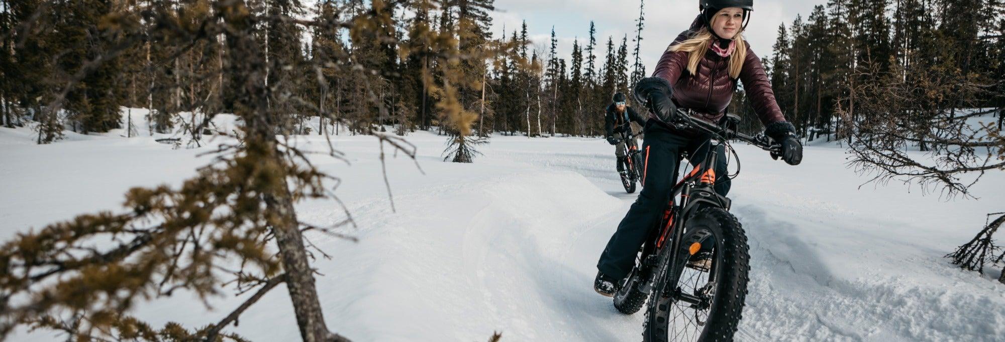 Tour en bicicleta eléctrica por Pallas-Yllästunturi
