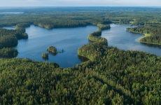 Senderismo por el Parque Nacional Liesjärvi