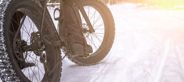 Alquiler de fat bike en Kuusa