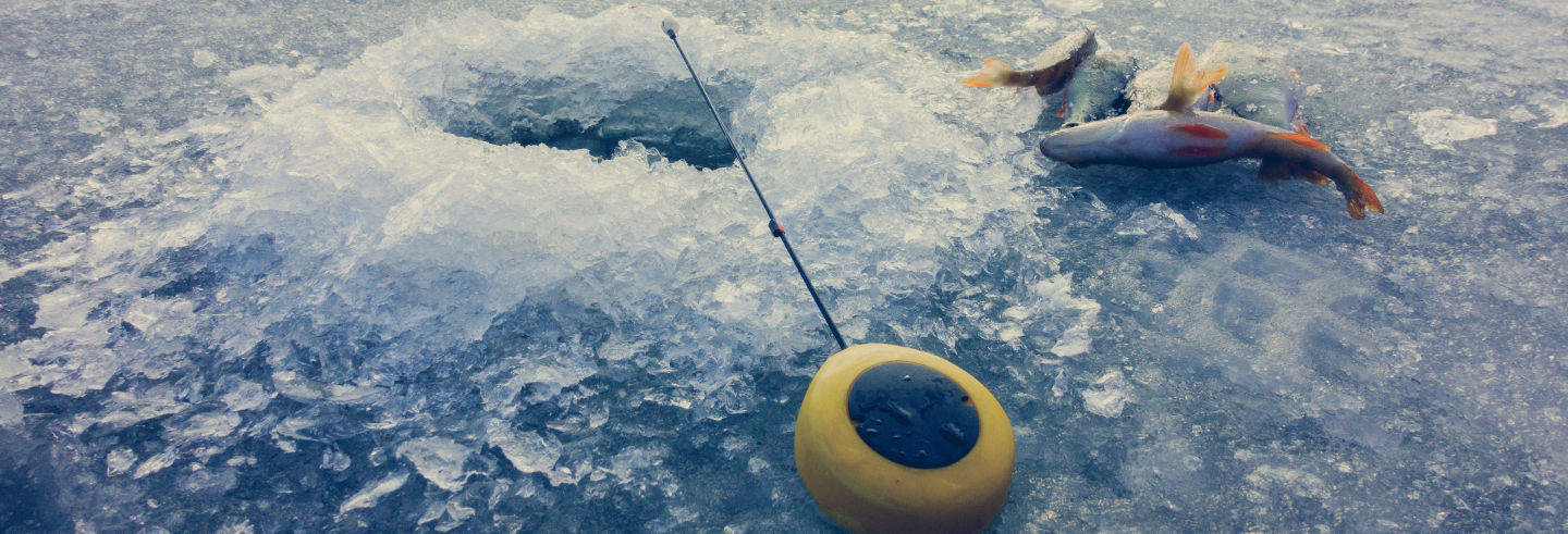 Showshoeing & Ice Fishing