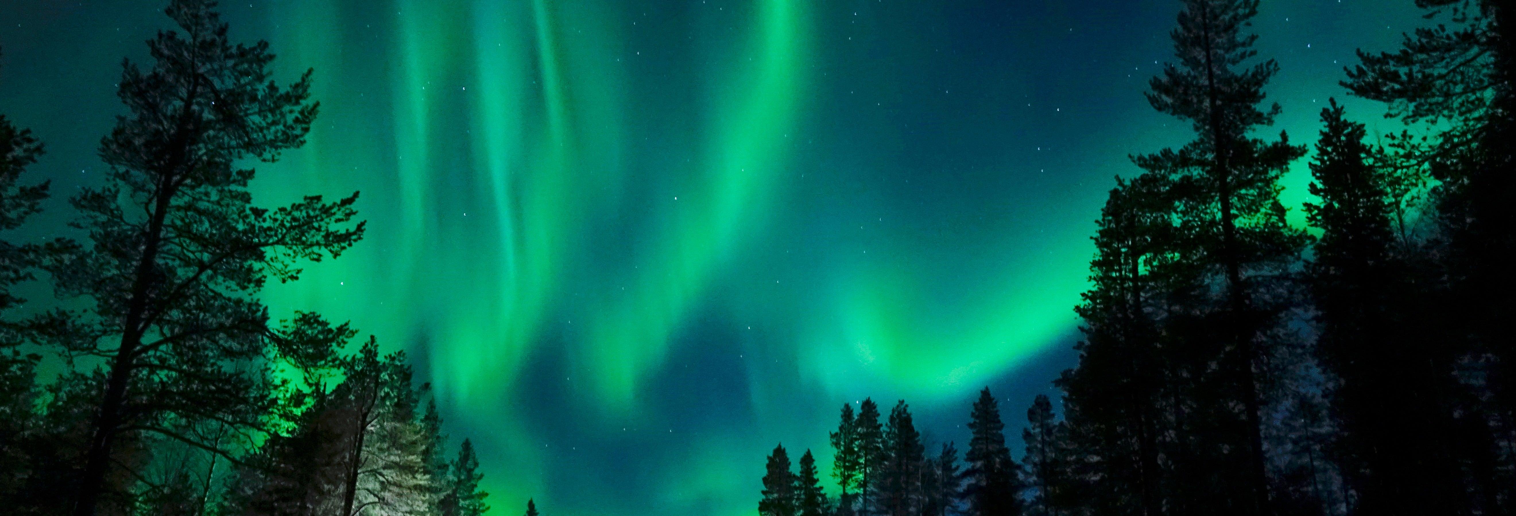 Balade en chiens de traîneau sous les aurores boréales