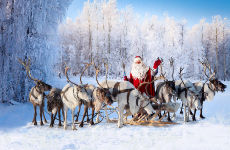 Aldea de Papá Noel en moto de nieve + Paseo en trineo de renos