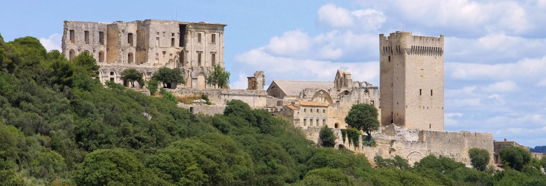 Entrada a la abadía de Montmajour sin colas