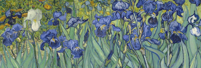 Tour de Van Gogh por la Provenza