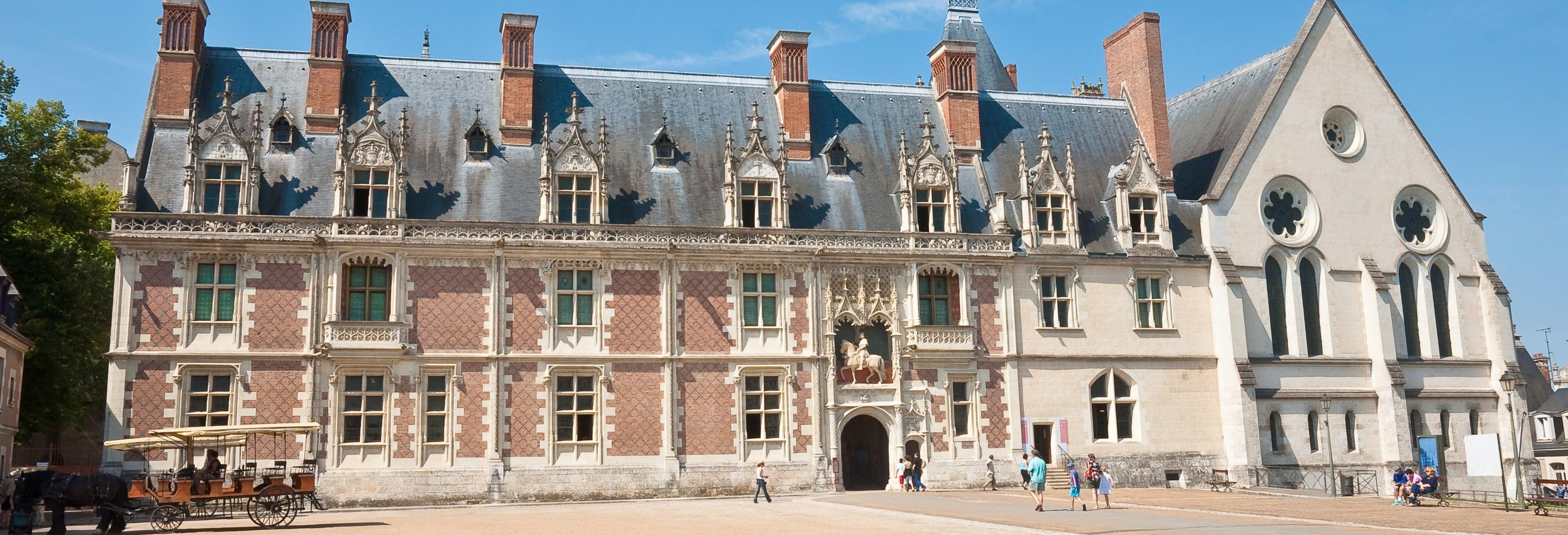 Entrada al castillo de Blois sin colas
