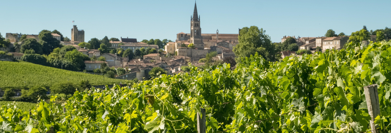 Excursion à Saint-Émilion