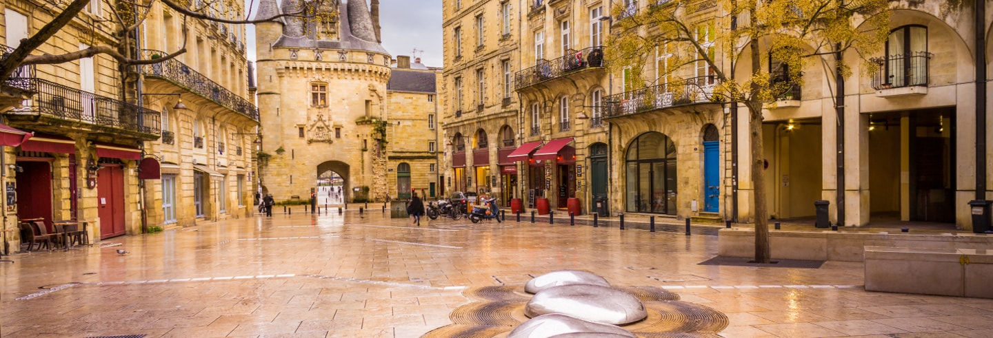 Free Walking Tour of Bordeaux