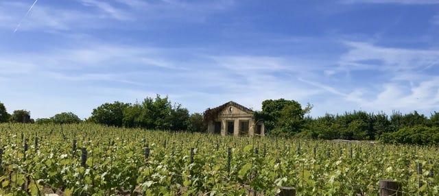Saint Emilion Wine Tour