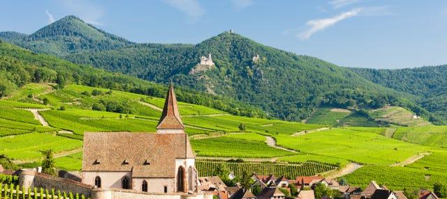 Visite complète de l'Alsace