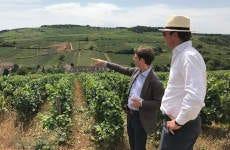 Visite autour du vin de Bourgogne dans Beaune