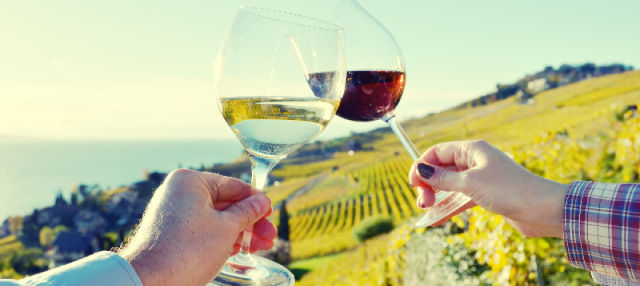 Visita a una bodega con degustación de vino