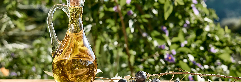 Tour del vino e dell'olio d'oliva