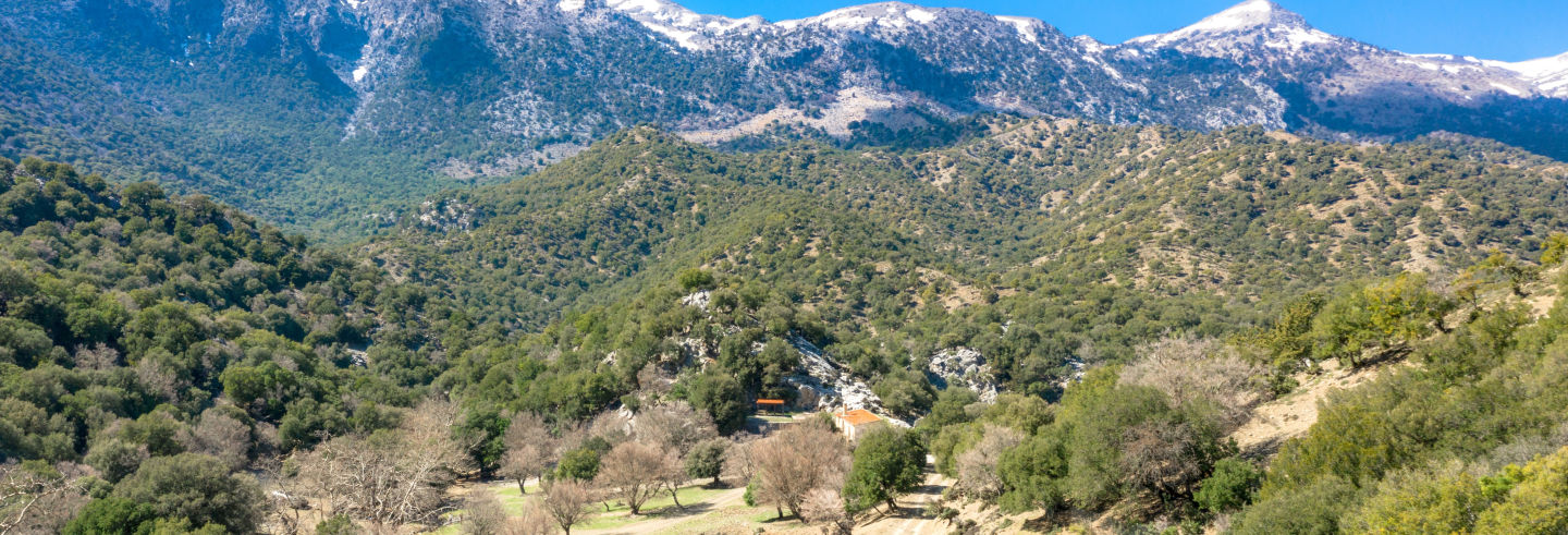 Tour en 4x4 por el monte Ida y Agia Pelagia