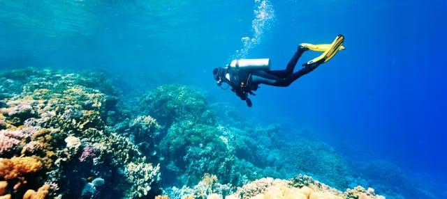 Rhodes Scuba Diving