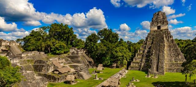 Excursión a Tikal en avión