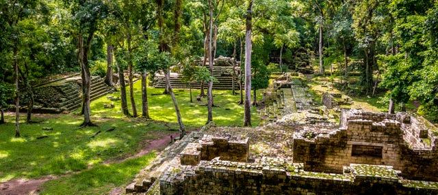 Excursión privada al Parque Arqueológico y Parque de Aves
