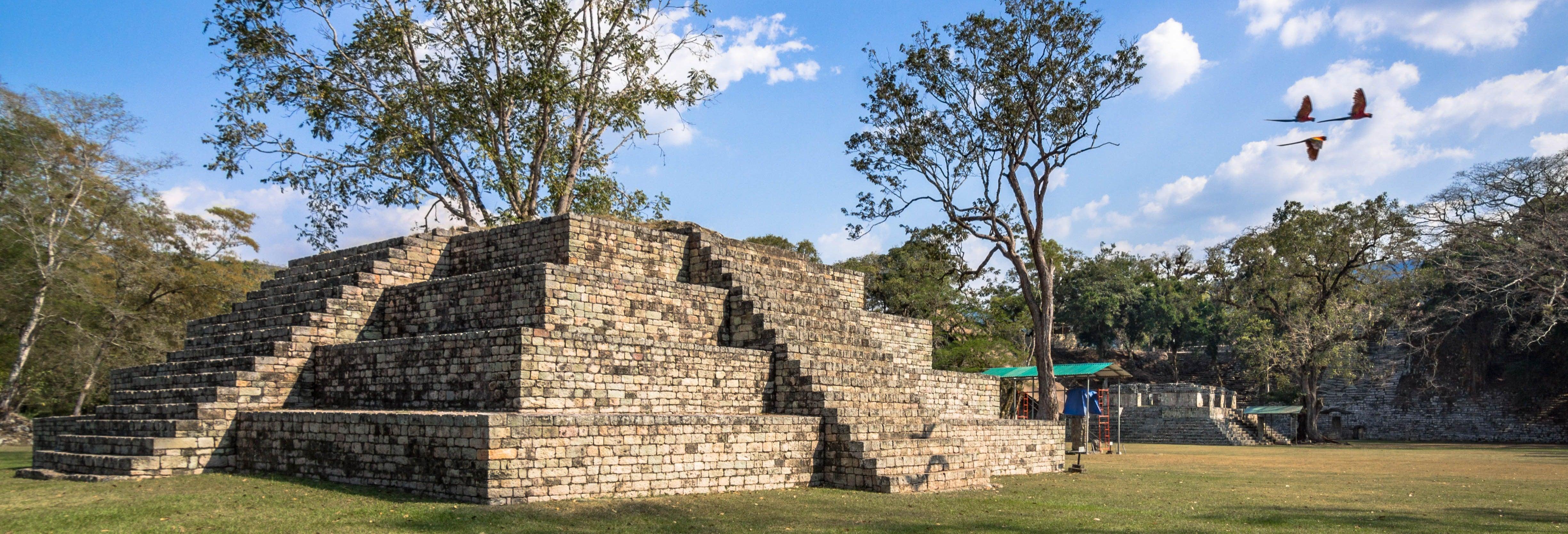 Tour privato di Copán Ruinas