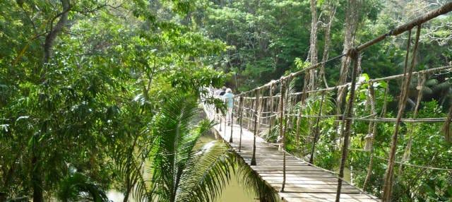 Excursion à Gumbalimba Park