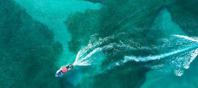 Paseo en barco con fondo de cristal