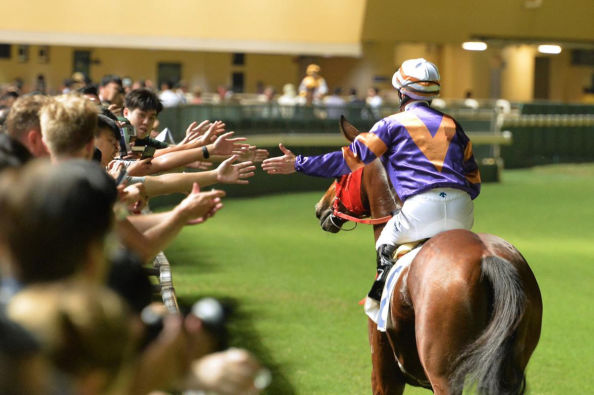 Happy Valley Horse Races in Hong Kong