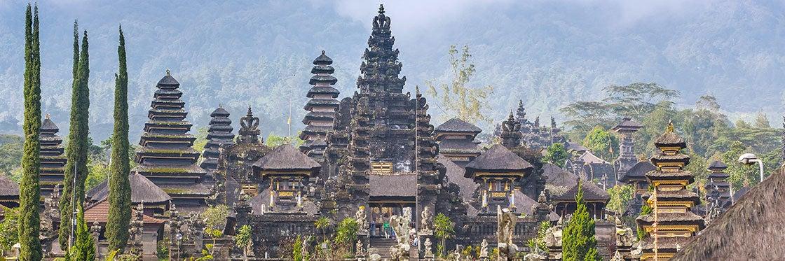 Storia di Bali